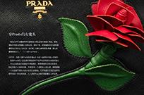 穿Prada的女魔头