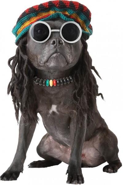 Dogs Halloween Costume